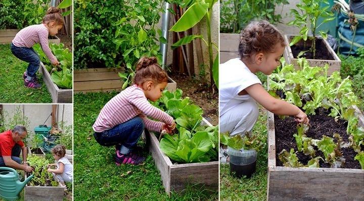 Et si d'aucy ajoutait 1 sachet de graines à planter du légume contenu ds la boite?Pour les mômes ça peut être sympa et les aider à en manger