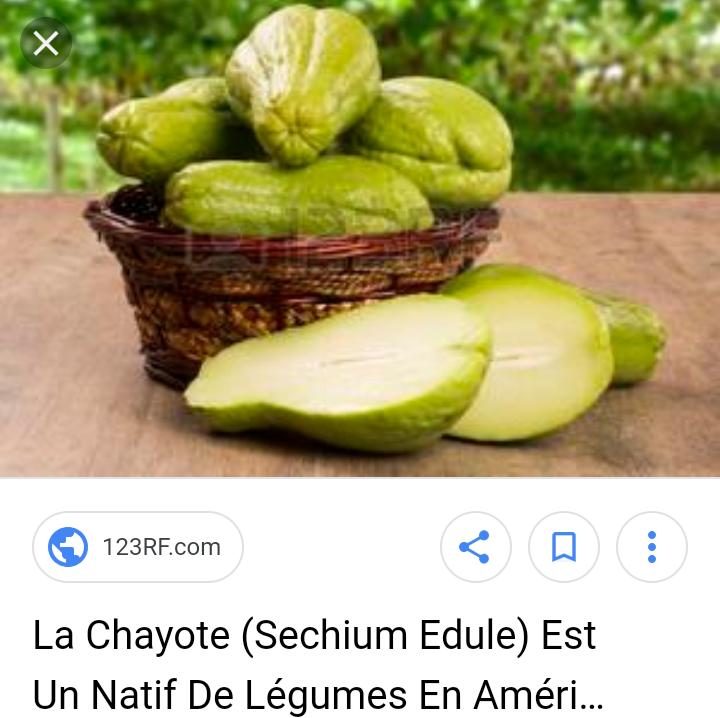 Et si Bioetpapilles proposerai des coffrets légumes du monde avec une thématique mensuel (1 mois avec des légumes d'Asie et le mois suivant des légumes d'Amérique du sud). il y a énormément de légumes que les Français ne connaissent pas . le tout bien sûr avec des producteurs BIO.
